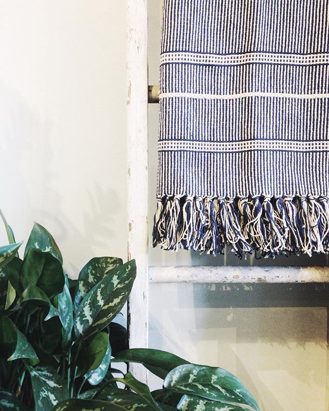 New dreamy throw blankets in the shop, pictured here with our favorite shop plant, Stan.