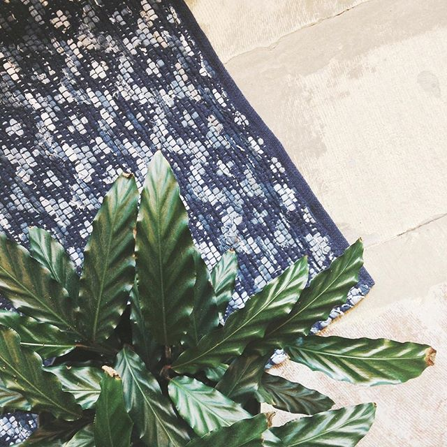 Need a new rug?  We've got you (and your floor) covered!