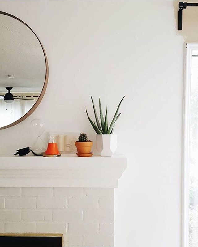 Aloe there! Every mantel vignette needs a great plant- or two! We've got a fresh batch of plants at the shop for you today. Stop by and pick out a few to liven up your space!⠀ ⠀ : @oinkoinkfatty