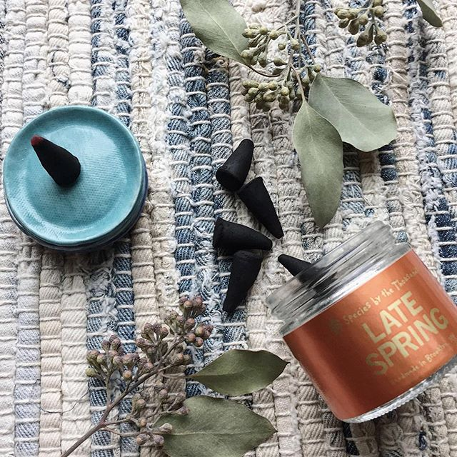 It's finally starting to warm up, Portland! Bring that familiar Spring scent indoors with these amazing incense cones by @speciesbythethousands. We have 4 styles to choose from, today and everyday.