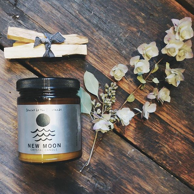 These New Moon candles by @speciesbythethousands  each contain a beautiful, powerful crystal that is said to open the door to change! Perfect when burned alongside a little Palo Santo.
