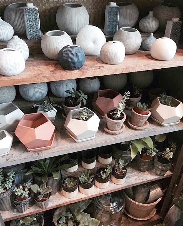 Potted and planted.  We've got shelves full of fresh plants and planters ready for you this weekend! Drop in and say hello!⠀ ⠀ : @thegirlandthekat