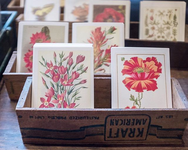 Send a sweet postcard posy to your favorite flower lover.