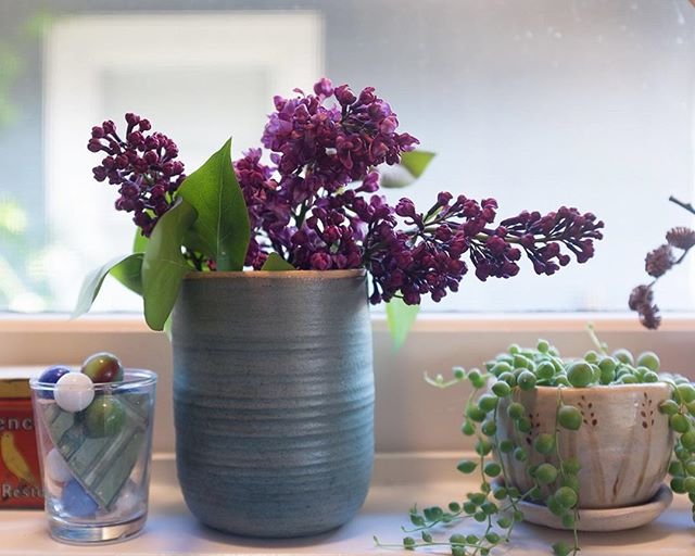 Sweet greens, pops of color & lots of sunshine! What's on your windowsill?