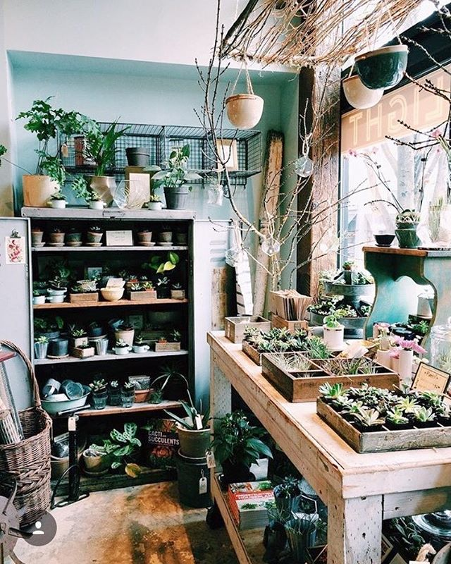 Everyone's favorite sunny corner is all stocked up with new plants and planters and we're here til 5 on this lovey autumn day. ⠀ photo by @lila.avatara