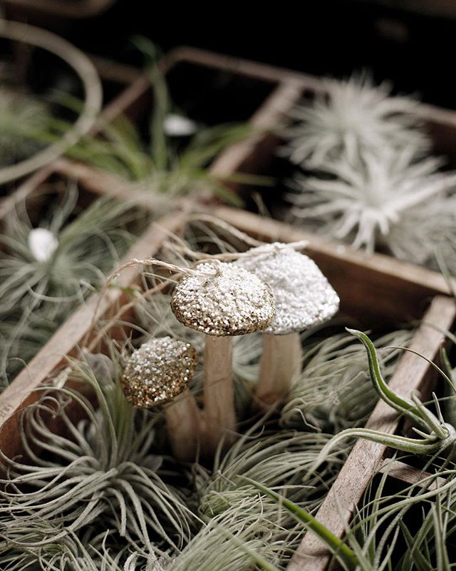 These sweet, sparkly mushroom ornaments would be perfect on your woodland themed tree this year.