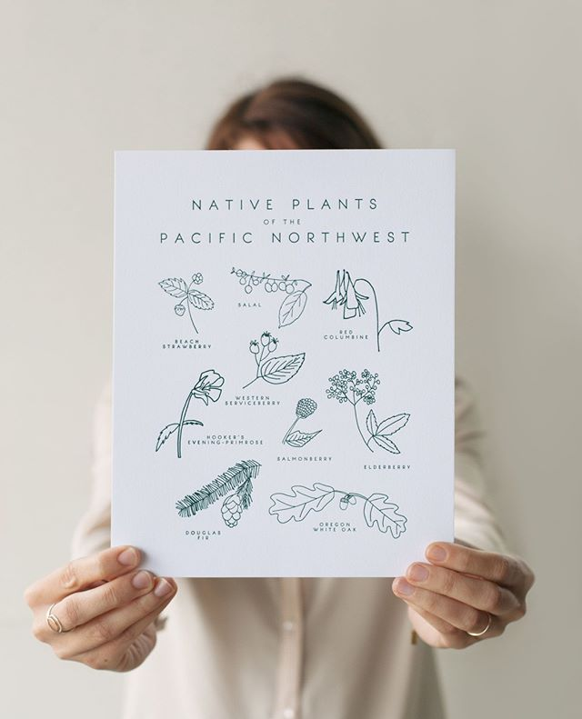 We're all stocked up on our favorite native plant prints from @taigapress !!