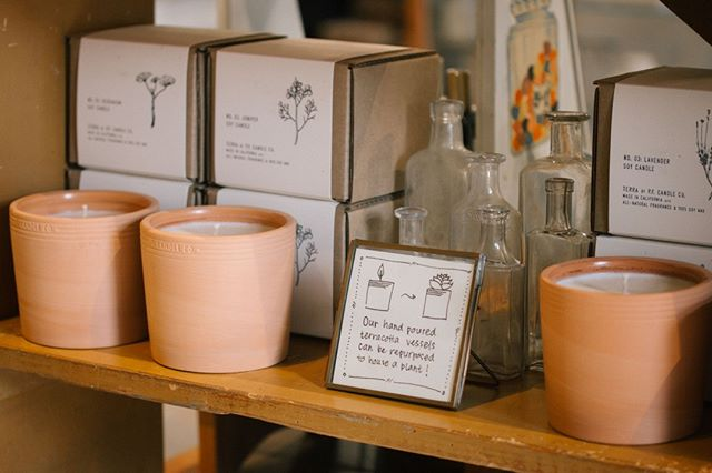From a candle to a cute planter. This transformation is possible with @pfcandleco
