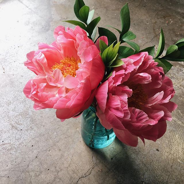 A little pop of color on this gloomy day  These peonies look beautiful in a vintage ball jar! What are your favorite garden flowers?