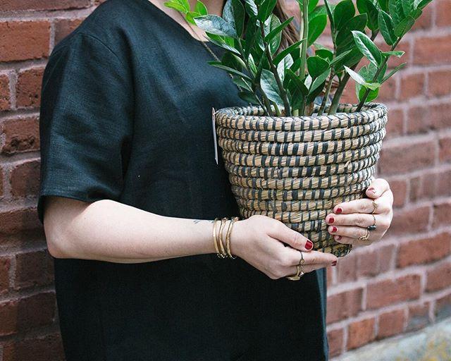 New plant baskets.