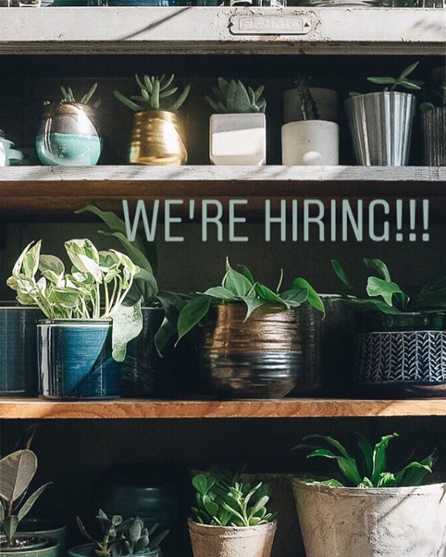 Porch Light Portland is seeking a new part-time employee to join our team. The ideal candidate for this position is confident, friendly and outgoing, connects with our aesthetic and represents our style to our customers, has excellent customer service skills, strong retail experience and a creative mind. Some knowledge of plant care is a plus. The position is for 2 to 3 days per week from 10:45am to 6:15pm INCLUDING WEEKENDS. If you want more info or are interested in applying please email your questions or a cover letter and resume to info@porchlightshop.com Better yet, drop one by the shop and say hello. We look forward to hearing from you (or your friends, so please pass it along!).