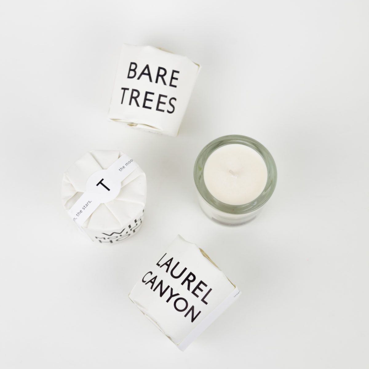 bare-trees-tisane