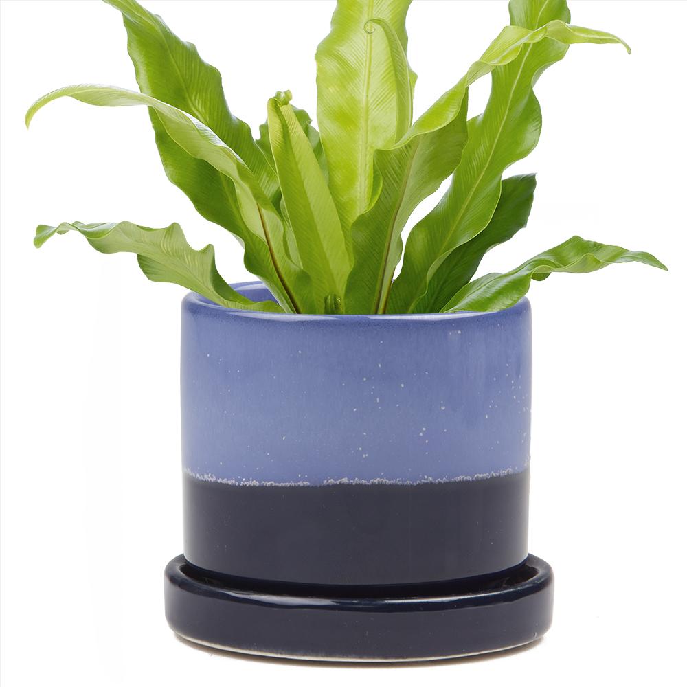 big-minute-pot-cobalt-blue