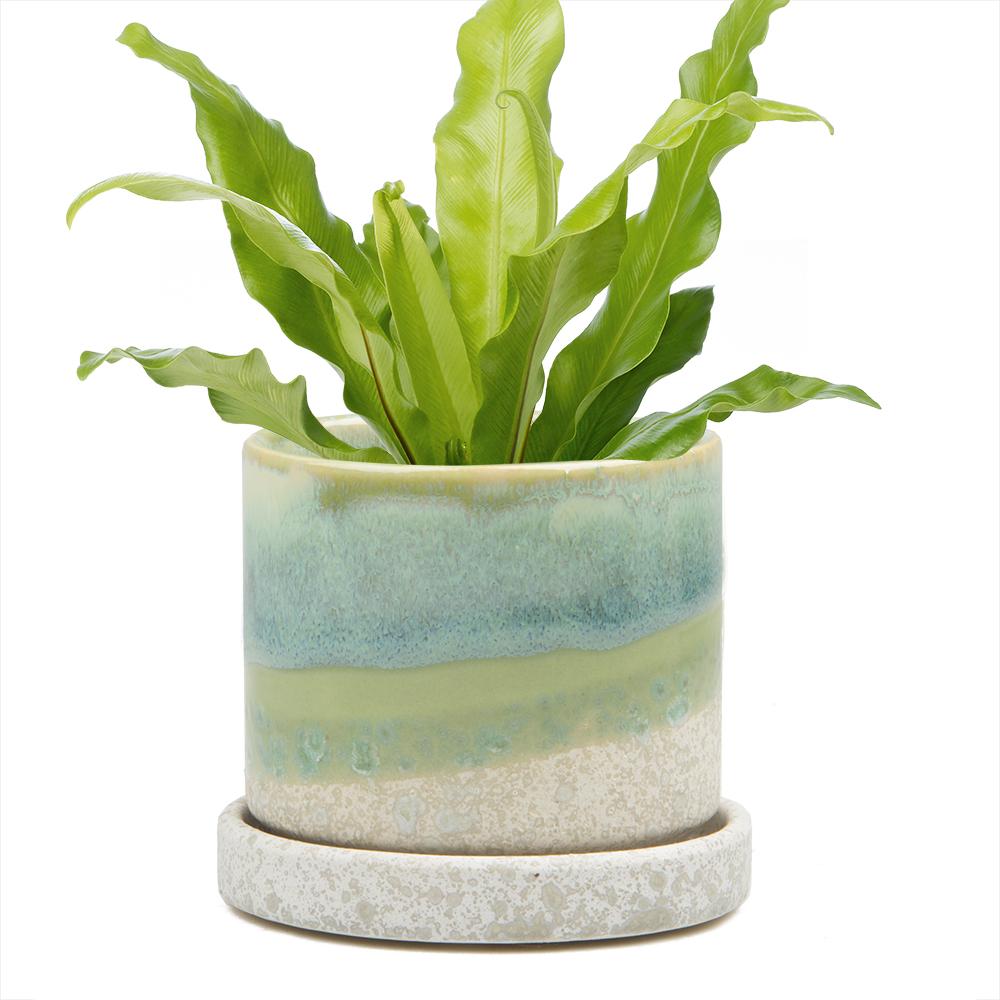 big-minute-pot-green-cement