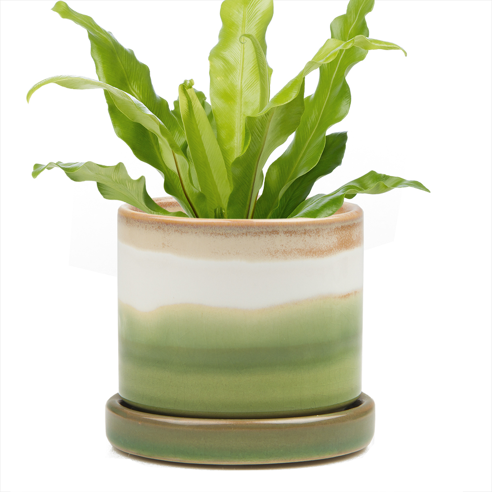 big-minute-pot-green-layers