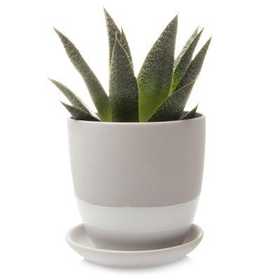 dyad-pot-light-grey