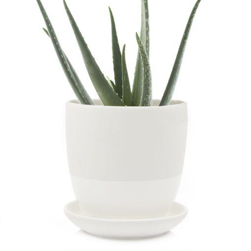 dyad-pot-white
