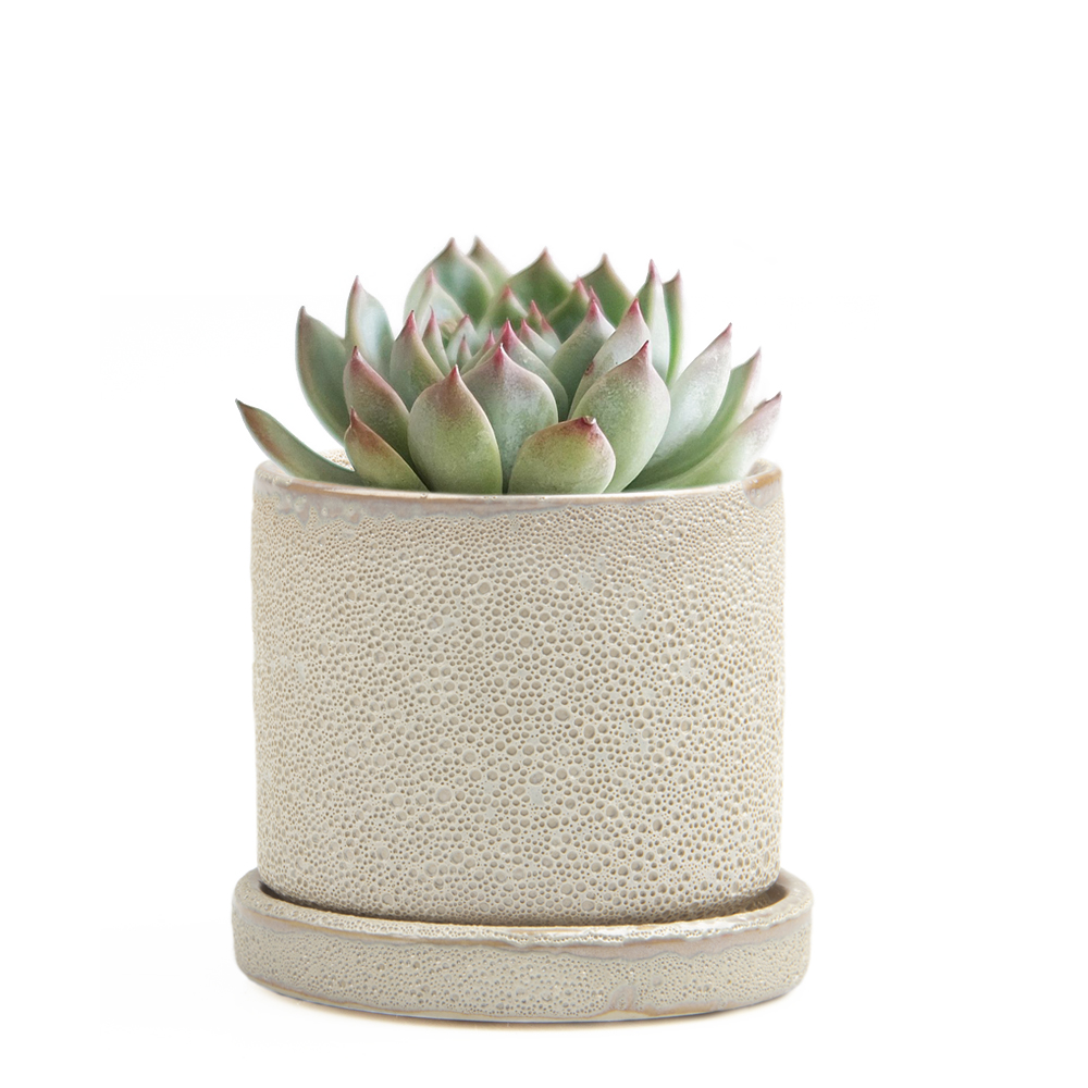 minute-pot-ivory-speckles-small