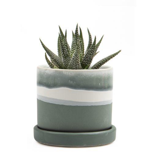 minute-pot-matte-green-small
