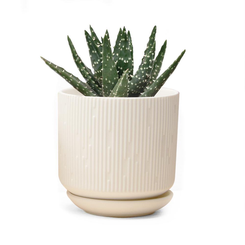 virago-pot-C-white