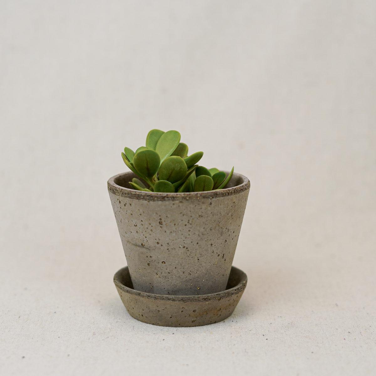 terracotta-simple-pot-grey