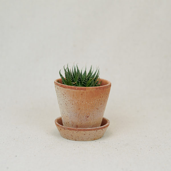 terracotta-simple-pot-pink