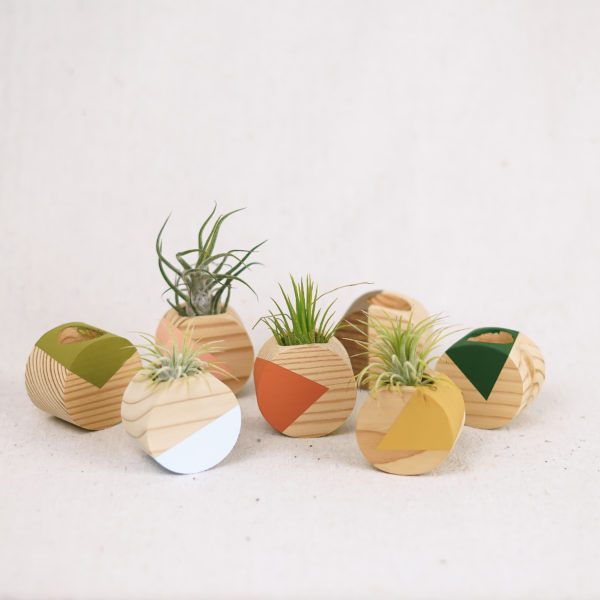 light-round-airplant-holders
